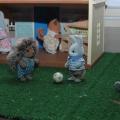 Отзыв о Флоковые игрушки Village Story: