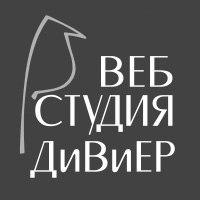Веб студия ДиВиЕР