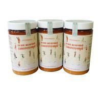Концентрированный сывороточный белок Протемикс