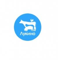lukino.ru интернет-магазин