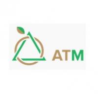 ATManagement Group международная консалтинговая компания