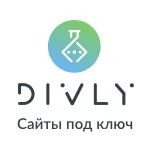 Divly - Отличный сервис