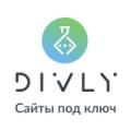 Divly отзывы