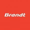Отзыв о Сервисный центр BRANDT: замена подшипников