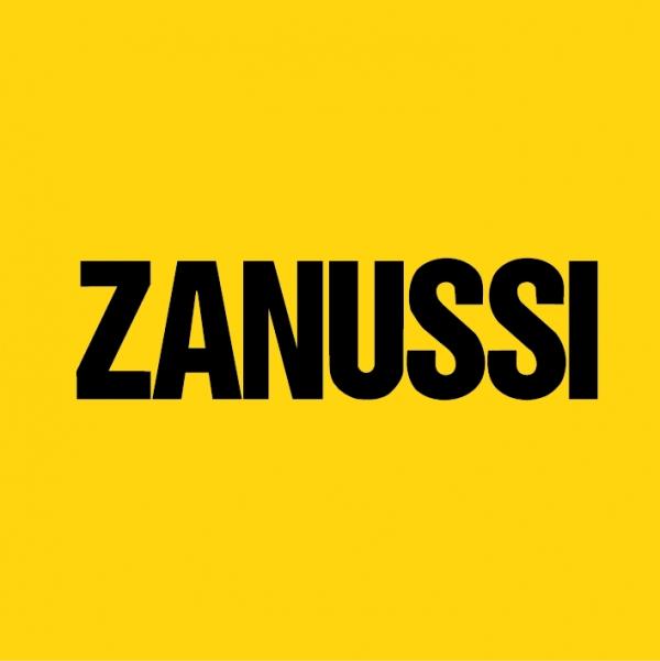 Ремонт стиральных машин Zanussi(Москва)