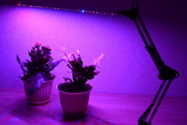 Фитолампа Super Growth / СуперРост