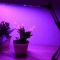 Отзыв о Фитолампа Super Growth / СуперРост: Каждому садоводу бы да по такой лампе!