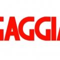 Отзыв о Ремонт бытовой техники Gaggia: ремонт