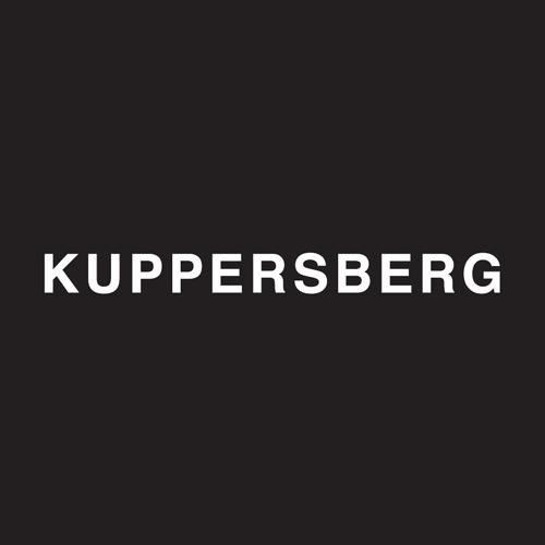 Ремонт бытовой техники Kuppersberg