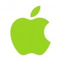 Отзыв о сц  apple: ремонт