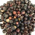 Отзыв о Черная смородина «Вологодская ягода»: Жесть по-вологодски, или рассказ о том, как я черной смородиной хотела