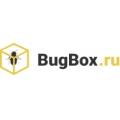 Отзыв о BugBox https://bugbox.ru: О компании
