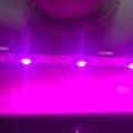"""Отзыв о Подсветка для растений в горшках """"Фейт"""": Подсветка для растений в горшках """"Фейт"""""""
