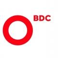 Отзыв о BDC Consulting: Лучшие специалисты в консалтинге